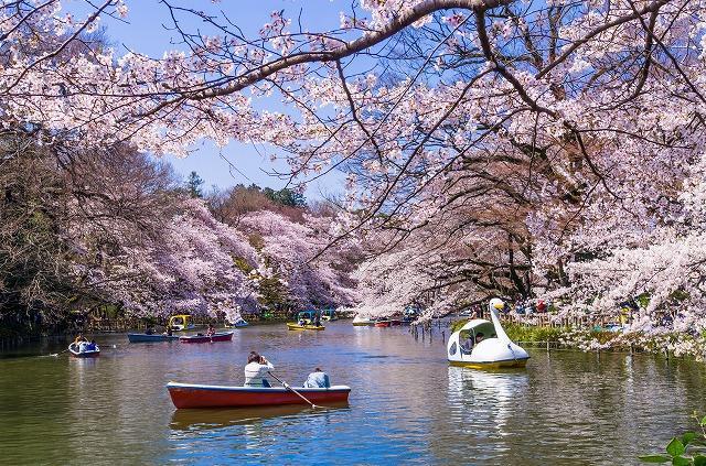 東京都 武蔵野市 井の頭公園
